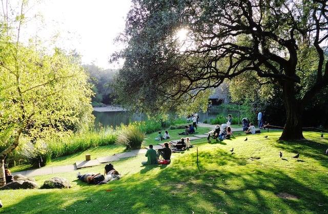 Jardim da Fundação Calouste Gulbenkian em Lisboa
