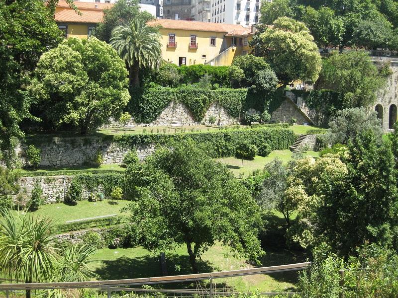Árvores do Jardim das Virtudes no Porto