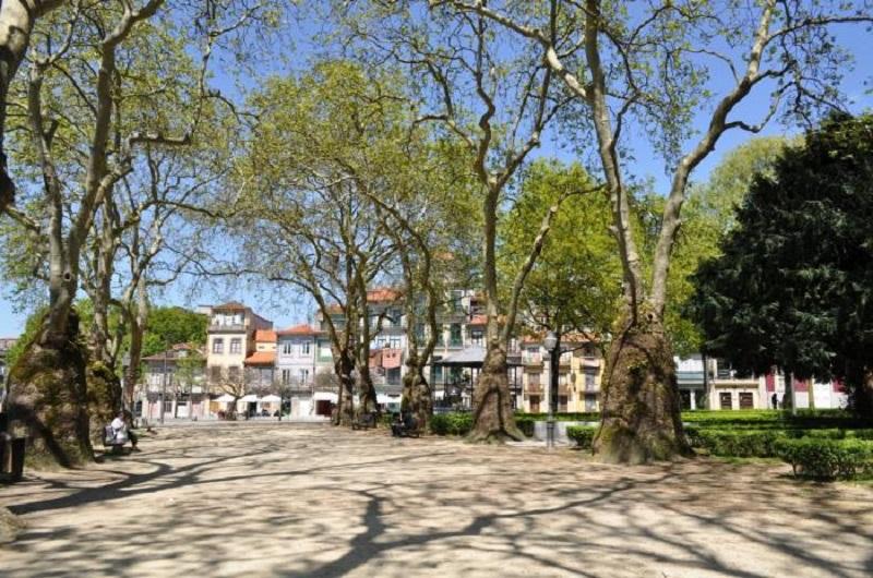 Árvores no Jardim de João Chagas no Porto