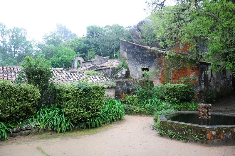 Floresta ao redor do Convento dos Capuchos em Sintra