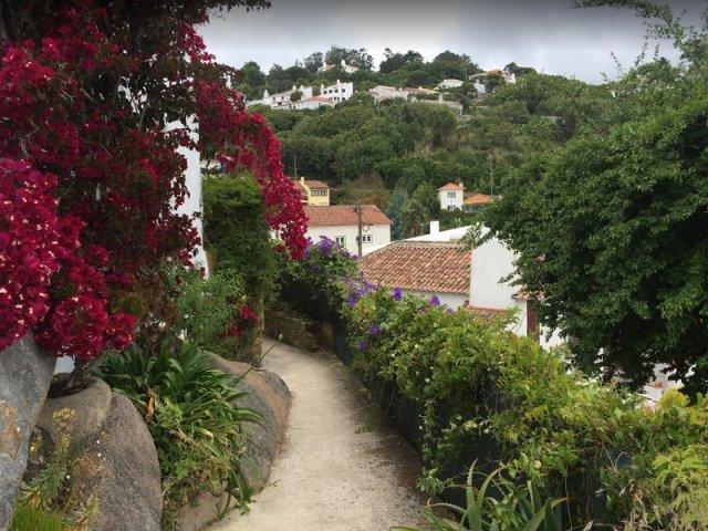 Penedo em Sintra